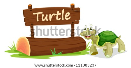 illustration of turtle and name plate on a white