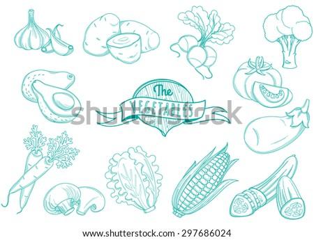 illustration Outline hand drawn vegetable set (flat style, thin  line) - stock photo