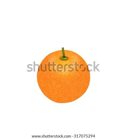 Illustration Photo-realistic Orange Fruit Isolated on White Background - raster - stock photo