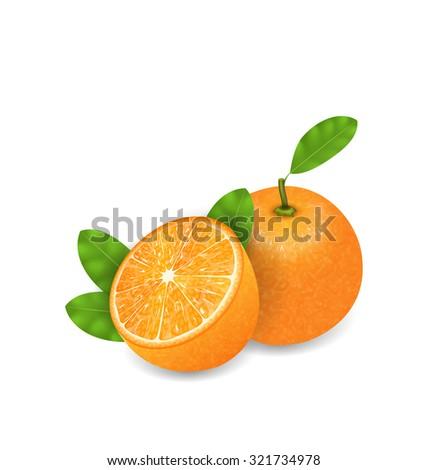 Illustration Photo Realistic Set Orange Fruits, Cut and Slices, Ripe Citrus - raster - stock photo