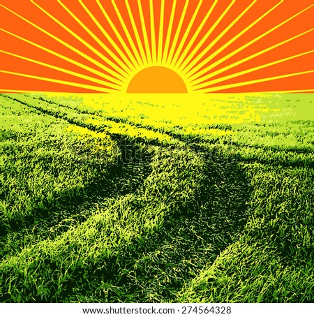 illustration red sun on a background of green grass - stock photo