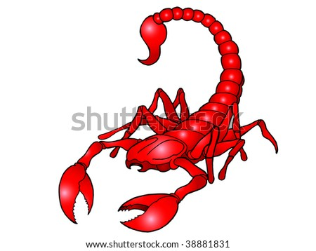 Illustration representing Scorpio the scorpion star or birth sign