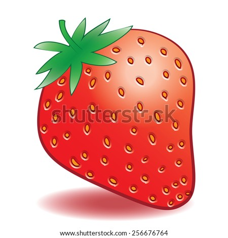 illustration. ripe strawberries on a white background - stock photo