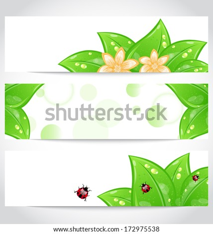 Illustration set of bio concept design eco friendly banners (2) - raster