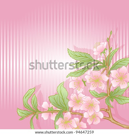 Illustration with cherry blossom for greeting card. Raster version.
