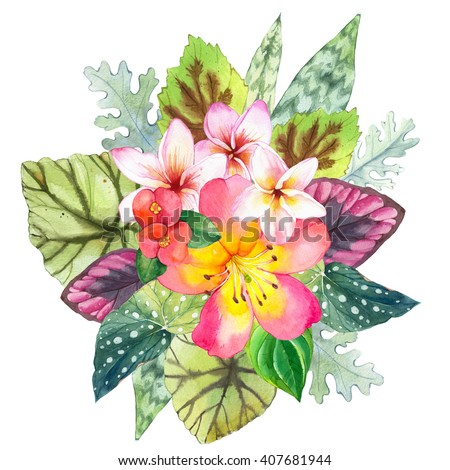 Illustration with realistic watercolor flowers. Beautiful pattern with tropical flowers and plants on white background. Composition with palm leaves, plumeria, strelitzia and begonia leaves. - stock photo