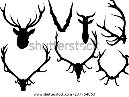illustration with set of antler and horns isolated on white background