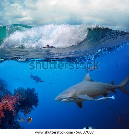 image about the ocean and surfer on the breaking wave cloudy sky over him and big dangerous angry hungry shark hunting - stock photo