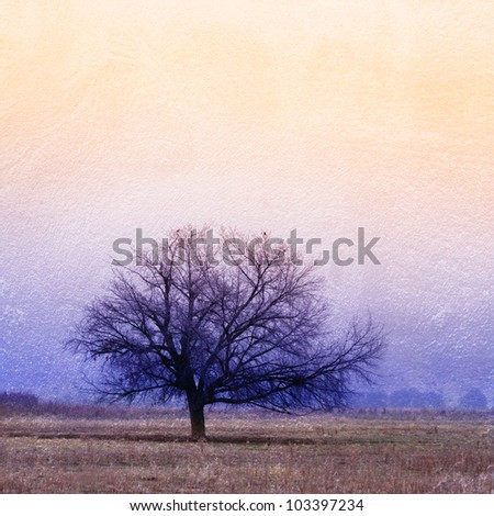 image from nature background texture series (trees)