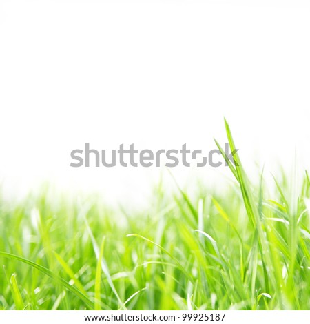 image from outdoor background series (sky and grass) isolated on a white background