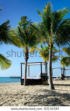 Image of a beautiful beach scene, featuring cabana beds, palm trees, beach, ocean and blue sky