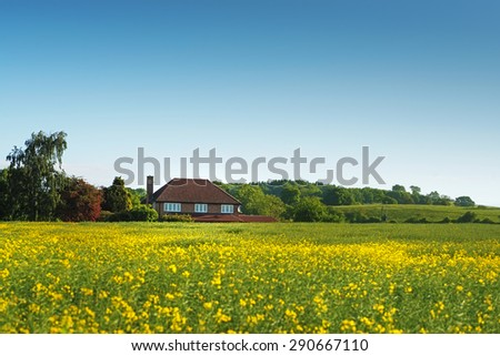 Image of a farmhouse in a field of rapeseed  - stock photo