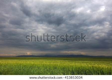 Image of a green wheat field with stormy clouds background - stock photo