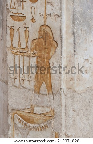 image of a hieroglyphic carving from the valley of queens, Luxor, egypt. - stock photo