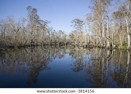 Image of a New Orleans area swamp with prominent reflections - stock photo