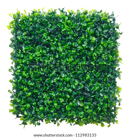 Image of Artificial Grass isolated on white background.