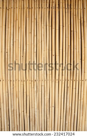 image of bamboo poles as wall or curtain - stock photo