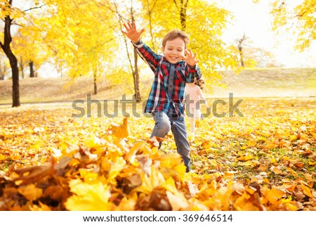 Image of beautiful boy jumping in the pile of autumn leaves, shallow depth of field - stock photo