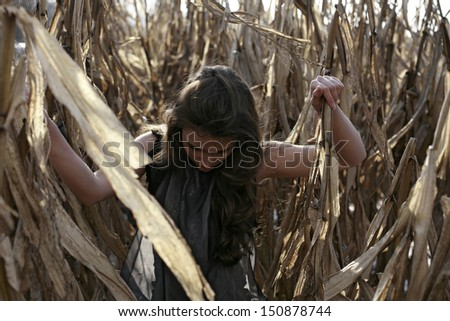 image of beautiful girl in the corn looking down