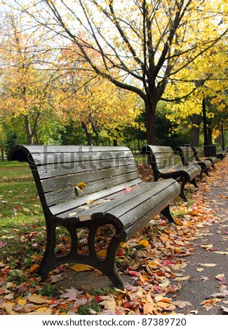 image of benches in a park at fall