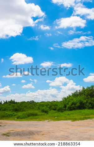 image of blue sky and trees.