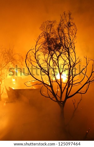Image of Burned tree and abandoned house in the city at dusk - stock photo