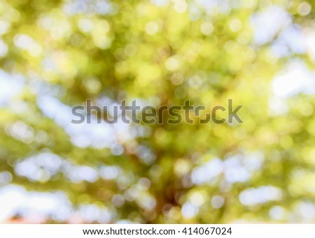 image of burred green tree background for your text, decoration or copy space
