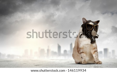 Image of cat in gas mask. Ecology concept - stock photo