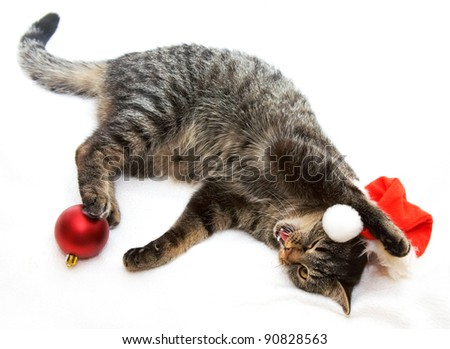 Image of cat lying with Christmas ball and hat - stock photo