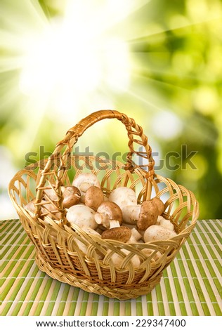 image of champignons in basket - stock photo