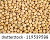 Image of close up of soya beans background - stock photo