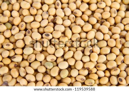 Image of close up of soya beans background - stock photo