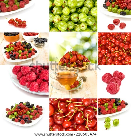 image of different berries on a white background