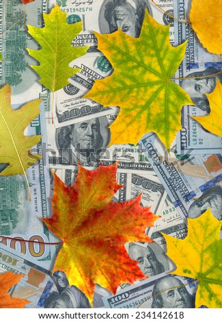 Image of dollars and autumn leaves closeup - stock photo