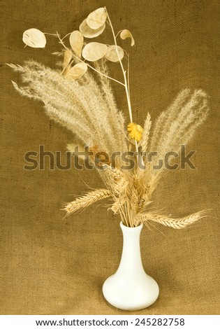 image of dried flowers in a vase