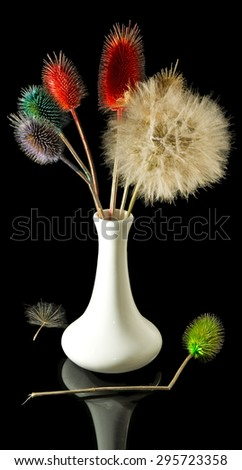 image of dried flowers on a black background - stock photo