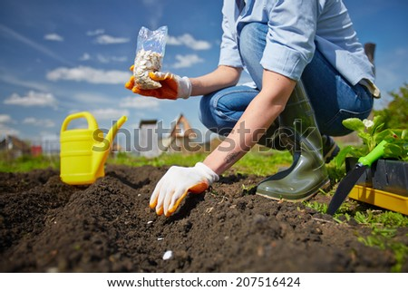 Image of female farmer sowing seed in the garden - stock photo