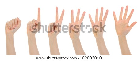 Image of female hands. Isolated on white background