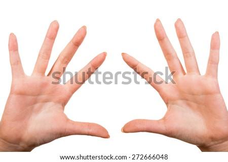 Image of female hands isolated on white background. - stock photo