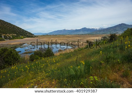 Image of flower meadow on slope of mountains and lake Prespa, Greece
