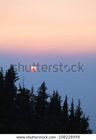 Image of forest silhouette against the sunset. - stock photo