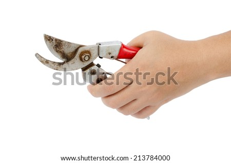 Image of garden pruner in hand isolate on white background - stock photo