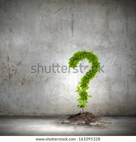 Image of green plant shaped like question mark - stock photo