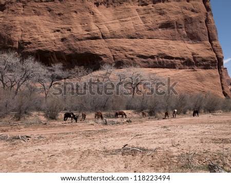 Image of group of animals with bare trees and cliff in background.