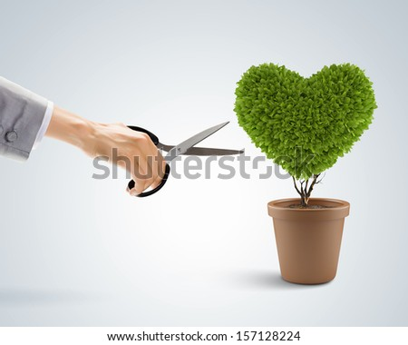 Image of human hand cutting leaves of plant in shape of heart