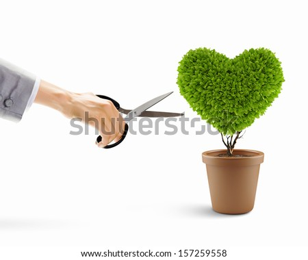 Image of human hand cutting leaves of plant in shape of heart - stock photo