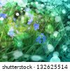 image of little blue flowers in the spring background/ Morning Fresh Landscape with sun blur/spring or summer background  - stock photo