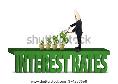 Image of male entrepreneur with cardboard head cuts plants on the pot, shaped percentage sign of interest rates. Isolated on white background - stock photo