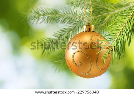 image of one Christmas ball on branch - stock photo