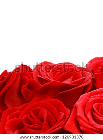 Image of red roses border, beautiful rose bouquet isolated on white background, fresh flowers, anniversary greeting card, floral frame with copy space, romantic present, Valentine day, love concept